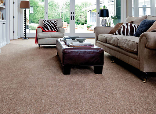 Premier Stainmaster Antioch Ca Abbey Carpet By